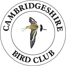 Cambridgeshire Bird Club