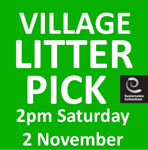 Cottenham Village Litter Pick November 2019